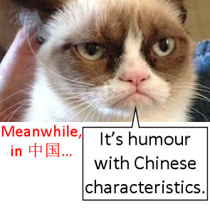 Grumpy Cat: humour with Chinese characteristics